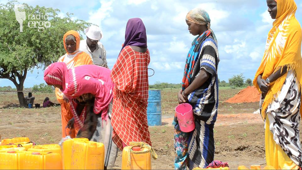 Bakool families moving to Ethiopia as livestock die in drought
